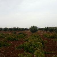 Photo taken at Kocabey Köyü by Sinan G. on 10/18/2013