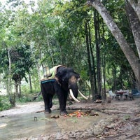 Photo taken at Langkawi Elephant Adventures by qiu q. on 4/26/2015
