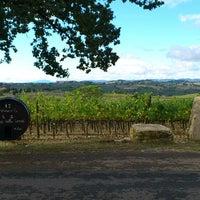 Foto scattata a Certosa di Pontignano da Ester V. il 10/6/2013