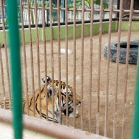 Photo taken at Zoologico Regional by Alex R. on 10/2/2016