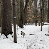 Photo taken at Comeau Trails by Joseph D. on 3/8/2018