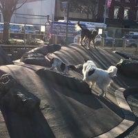 Photo taken at Chelsea Waterside Park Dog Run by Joseph D. on 3/3/2017