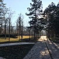 2/1/2018 tarihinde Huseyin D.ziyaretçi tarafından Odunpazarı Botanik Parkı'de çekilen fotoğraf