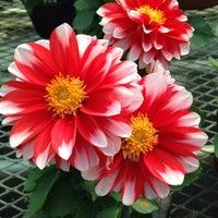 Photo taken at Dewald Gardens by Lisa B. on 5/6/2014