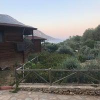 7/2/2018 tarihinde Mehmet Salim K.ziyaretçi tarafından mavi papağan evleri'de çekilen fotoğraf