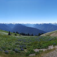 Photo taken at Olympic National Park Visitor Center by Janice C. on 7/7/2017