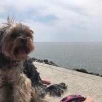Снимок сделан в Пляж Олимпийского парка пользователем Nelly E. 5/2/2017
