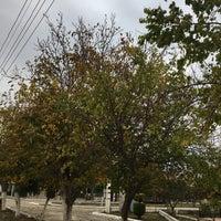 Photo taken at Kuş-ar Sahil by Aslı E. on 11/30/2016