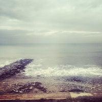 1/31/2014にMichel C.がПляж Веснаで撮った写真