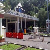 Photo taken at Institut Pertanian Bogor (IPB) by Karina M. on 3/12/2013