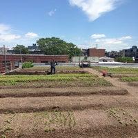 Photo prise au Eagle Street Rooftop Farms par SkeeterNYC le5/26/2013