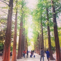 Photo taken at Nami Island by Janice C. on 10/18/2014