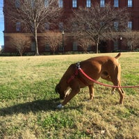 Photo taken at The Lawn of the National Building Museum by Armie on 12/14/2016