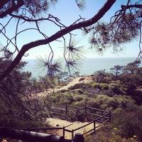 Foto tirada no(a) Torrey Pines State Beach por Taylor L. em 4/19/2013