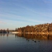 Photo taken at Симоново Озеро by Ilya V. on 11/6/2016