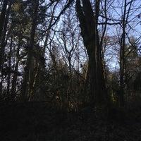 Photo taken at Wildwood Park by Renee T. on 1/2/2013