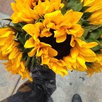 Photo taken at Church Street Flowers by Rachel K. on 4/5/2015