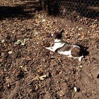 Photo taken at Marcus Garvey Park - Dog Run by Ashley J. on 10/20/2013