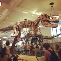 Photo taken at American Museum of Natural History by Courtney N. on 7/23/2013