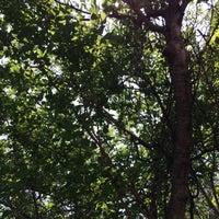 Photo taken at John Mise Park by Diane D. on 8/7/2014