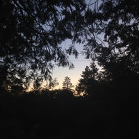 Photo taken at Idyllwild Campground by Shay's D. on 6/14/2014
