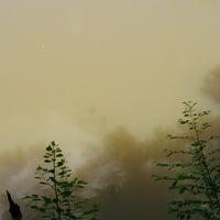 Photo taken at แอ๊ดป่าไม้ ริมนำ้ by Cobaltblue N. on 8/11/2014