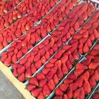 Photo taken at West LA Farmers Market by Jeff J. on 11/25/2012