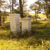 Photo taken at Hill Top Honey Farm by Mason B. on 7/10/2013
