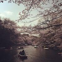 Foto scattata a Inokashira Park da SASAPi . il 3/24/2013