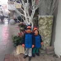 Photo taken at Orjin Çiçekçilik by Banu on 1/26/2016