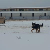 Photo taken at Origo Gıda Kimya Tic.Ltd.Şti by Hakan Ö. on 12/21/2016