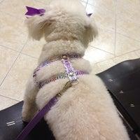 Photo taken at Clínica Veterinária Dog Med by Neuza R. on 4/11/2014