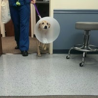 Photo taken at Northlake Veterinary Surgical by Bradford R. on 10/9/2014