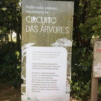 5/13/2013にTayra V.がCircuito das Árvoresで撮った写真