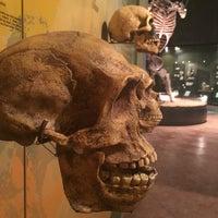 Photo taken at Museo de Paleontología by nd  on 7/27/2016
