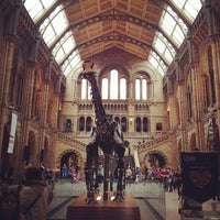 Photo taken at Natural History Museum by Andre R. on 6/23/2013
