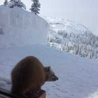 Photo taken at selkirk mountain experience by Adrianne H. on 2/26/2014