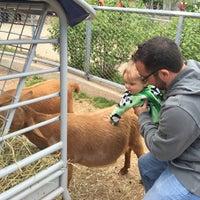 Photo taken at Kid Zoo U by Sarah B. on 5/15/2016