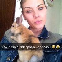 "Photo taken at Ветеринарна клиника ""Вива Вет"" by Veronika V. on 4/5/2014"