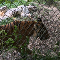 Photo taken at Exotic Feline Rescue Center by Scott B. on 9/4/2016