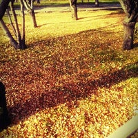 Photo taken at nasrettin hoca parki by Güzin . on 11/18/2013