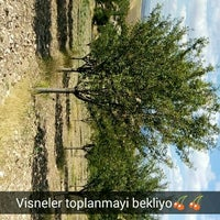 Photo taken at Eşmedere Köyü by Büş'ra . on 7/6/2016