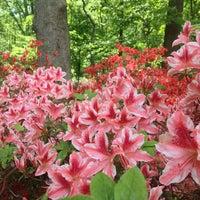 Photo taken at United States National Arboretum by Justin S. on 5/10/2013