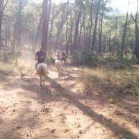 Photo taken at Fethiye Horse Rıdıng by Berkay G. on 8/19/2014