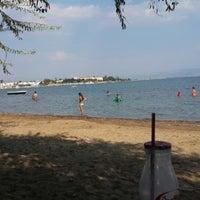 9/3/2013 tarihinde Taçsız Kral P.ziyaretçi tarafından Güre Sahili'de çekilen fotoğraf