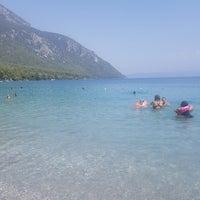 8/31/2018 tarihinde Rahşan T.ziyaretçi tarafından Akbuk Plaji'de çekilen fotoğraf