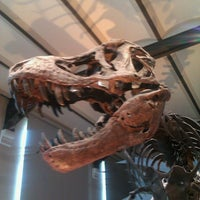 Photo taken at Museum of Natural Sciences by Maxime on 5/12/2013
