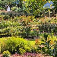 Photo taken at Raleigh Rose Garden by Bryan D. on 10/2/2012