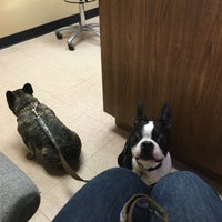 Photo taken at Heritage Animal Hospital by Kelly K. on 2/26/2016