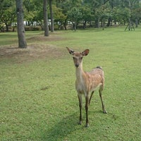 Photo taken at The Deer Park Inn by Syawal A. on 6/19/2014
